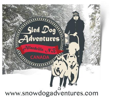 Sled Dog Adventures offers dog sledding adventures for everyone.